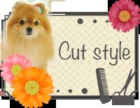 Cut Style