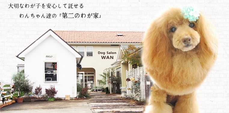 Dog Salon WAN店舗外観
