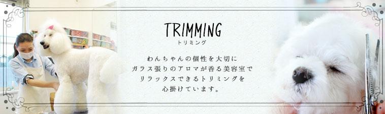 トリミング